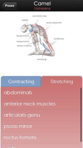 yoga anatomy pro